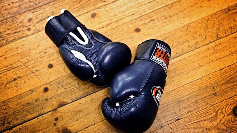 boxningshandskar, närbild. Foto: Cata Portin/Scanpix
