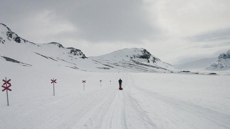 Skidåkare på väg mot Sylarna. Foto: Staffan Andersson.