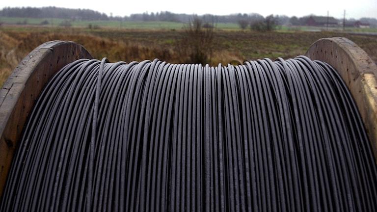 Bredbandskabel redo att grävas ner i backen Foto Scanpix
