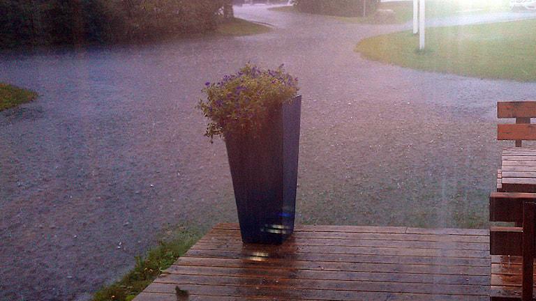Skyfall utanför radiohuset i Östersund. Foto Staffan Andersson