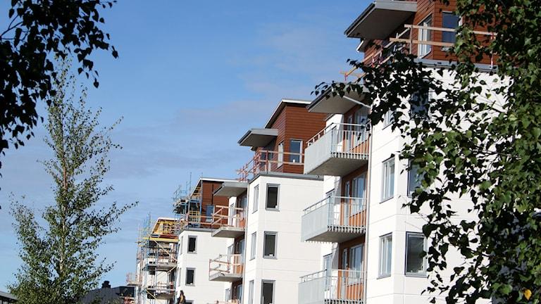 Bostäder på stadsdel norr. Foto: Jan Mårdberg/Sveriges Radio