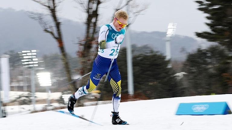 Manlig skidåkare i svensk landslagsdräkt åker skidor