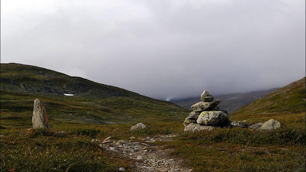 Vandringsleden från Stekenjokk till Ransarån. Foto Staffan Andersson