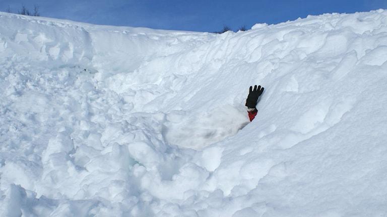 Fjällräddningens alpina grupp tränade inför kommande uppdrag. Foto: Marcus Frånberg