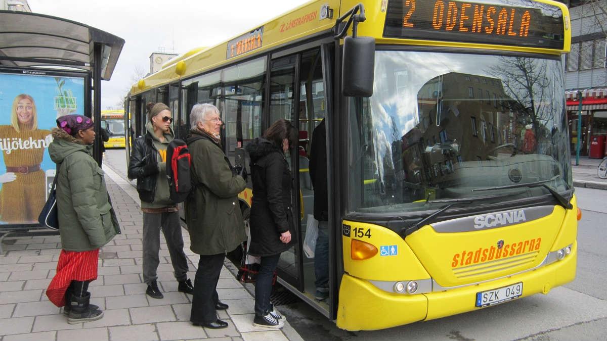 En av Stadsbussarnas gula bussar. Foto: Sophia Weston