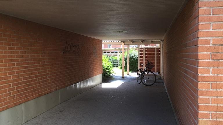 Cykel i tunnel.