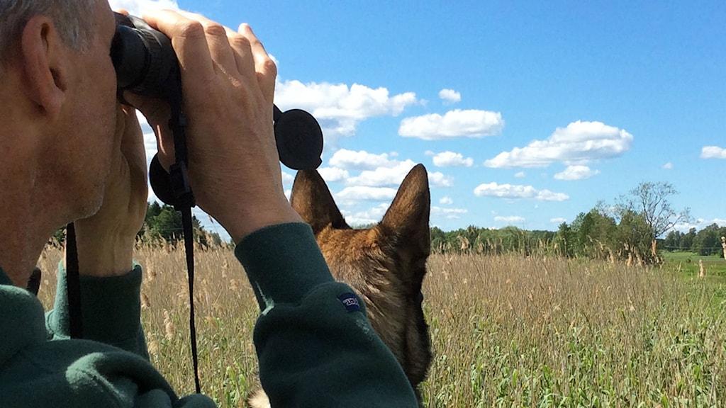 Man med kikare och hund på gräsfält