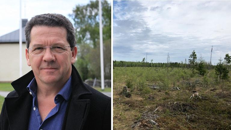 Peter Reeve ordförande för bolaget Aura energy.