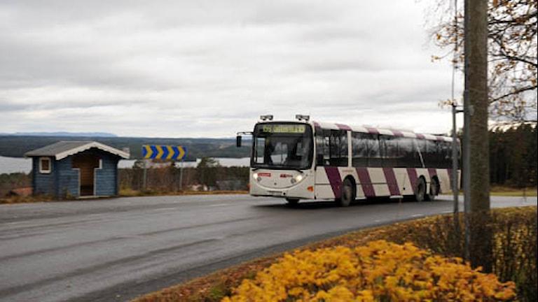 Buss på väg