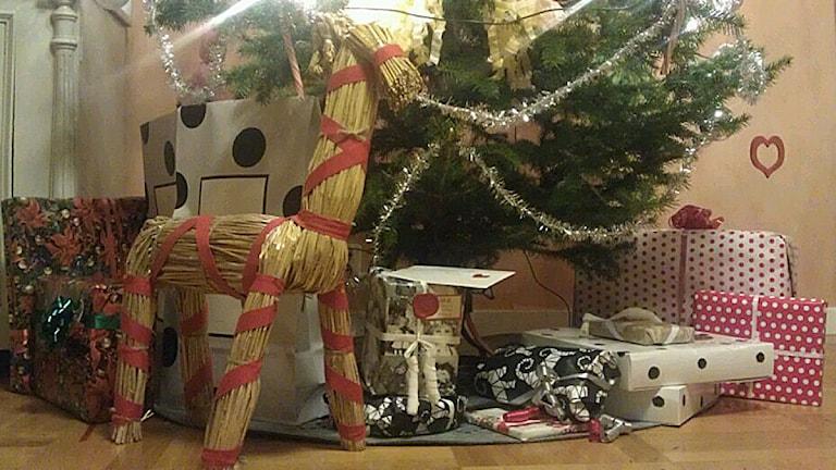 Julgran med julklappar och julbock. Foto: Lotta Löfgren/Sveriges Radio.