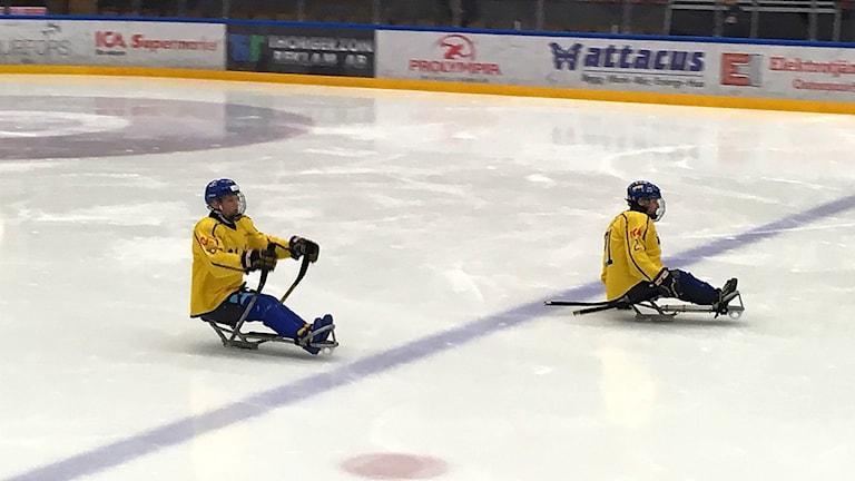 Sveriges para ishocky landslag är klart för Paralympics.