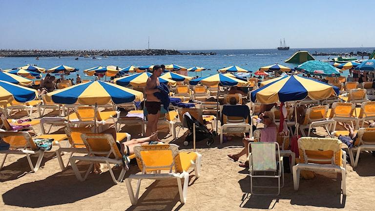 Solbadande människor och solparasoller på sandstrand