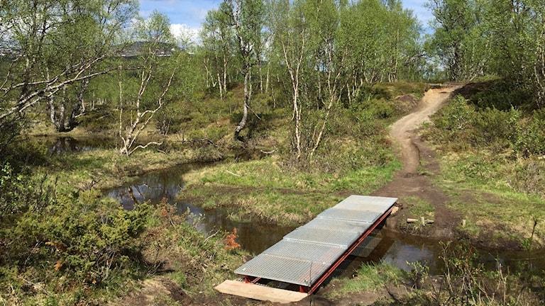 Enkel bro över vattendrag i fjällmiljö