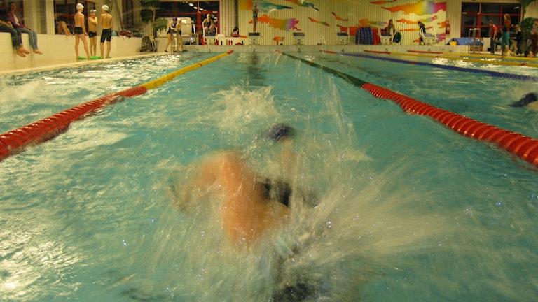 Simklubben SK Ägir har drygt 1500 aktiva i föreningen och simbanorna i de olika badhusen runt om Östersund räcker inte till och klubben planerar därför att bygga en ny egen simhall. Foto: Jessica Brander/Sveriges Radio.