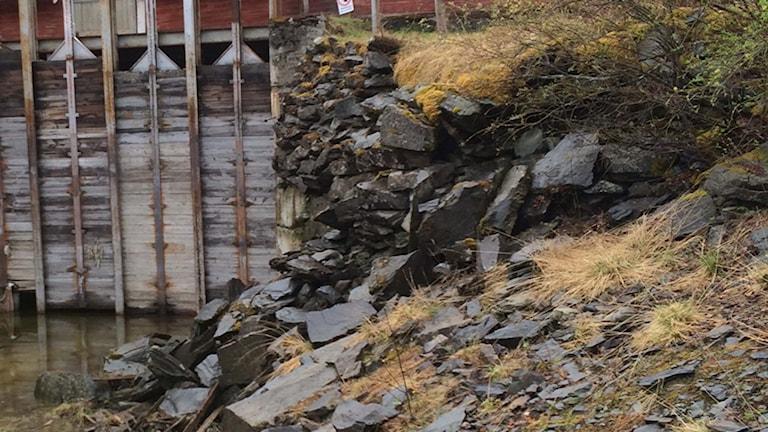 Del av den rasade dammen. Foto: Lotta Edman/SR