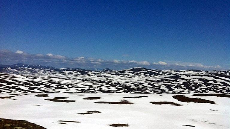 fjäll med snö i juni