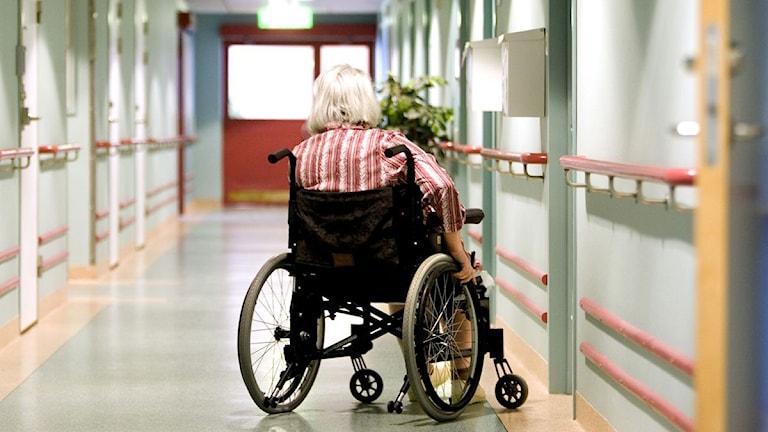 En kvinna i rullstoll på ett äldreboende. Foto: Pontus Lundahl / TT.