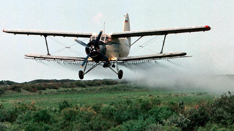 Flygplan som jobbar med flygbesprutning. Foto: Musa Sadulajev/TT/AP