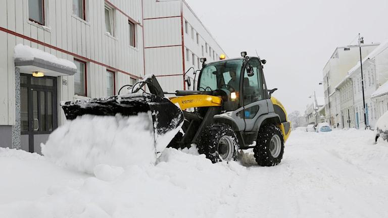 Snöröjning med traktor. Foto: Tor Erik Schrøder/TT.