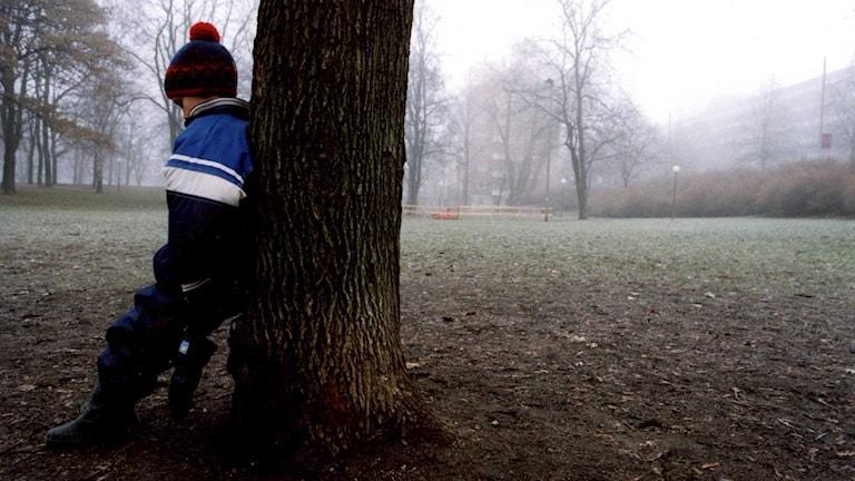 Ett barn lutar sig mot ett träd. Foto: Ingvar Karmhed / TT