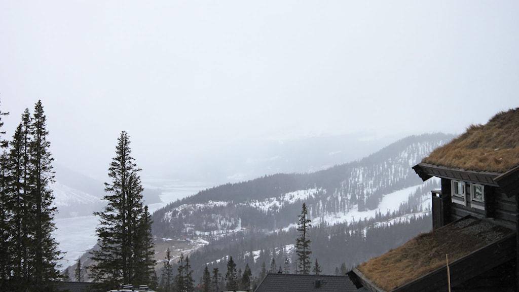 Dalgång i fjällen med stugor, granar och snö i mulet väder