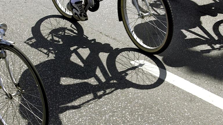 Flera personer cyklar på en väg. Foto: Tomas Oneborg/TT.