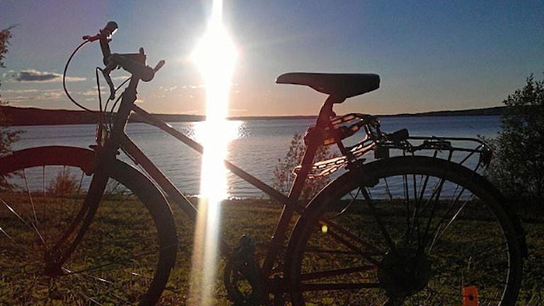 Cykel i solnedgång. Foto: Lotta Löfgren/Sveriges radio.