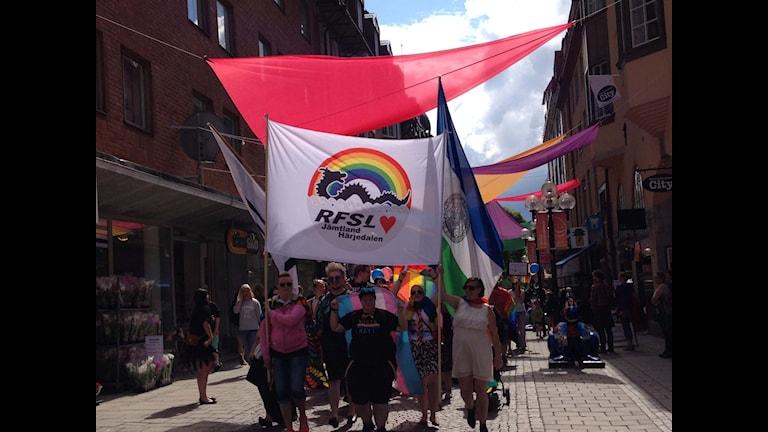 RFSL:s flagga med Storsjöodjuret bars längst fram i prideparaden i Östersund 2015.