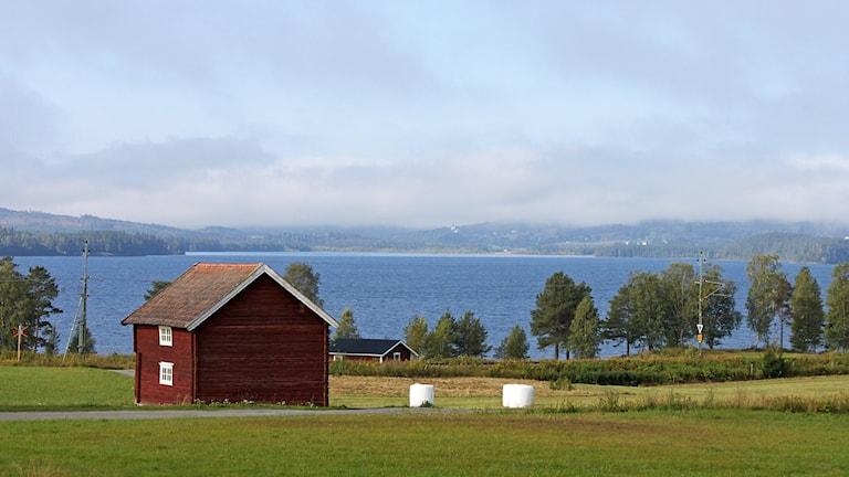 Indalsälven vid Strand, Järpen. Foto: Lotta Löfgren/Sveriges Radio.