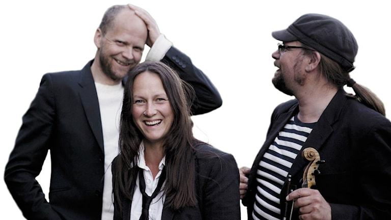 Triakel. Foto: Karin Alfredsson.