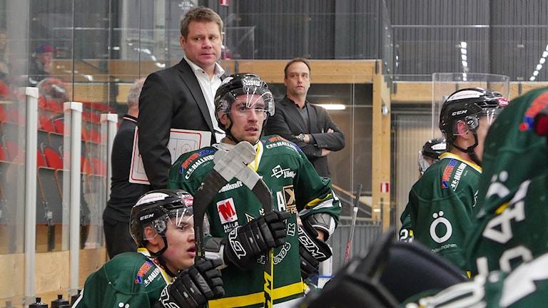 Forwarden Nisse Bergström, står i båset med lagkamrater och tränare Foto: Simon Gunnholt/Sveriges Radio