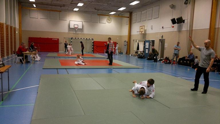 Tävlingar i brasiliansk jiu-jitsu i Östersunds sporthall. Foto: Östersunds jeet kune do-klubb