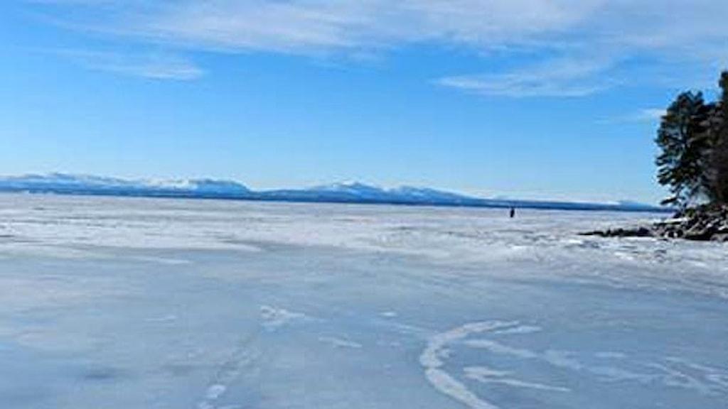 Vy över Storsjöns is utanför Vejmon där man planerar för storskalig fiskodling.