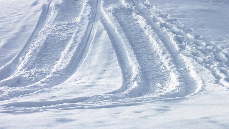 Skoterspår - snöskoter - snö - vinter