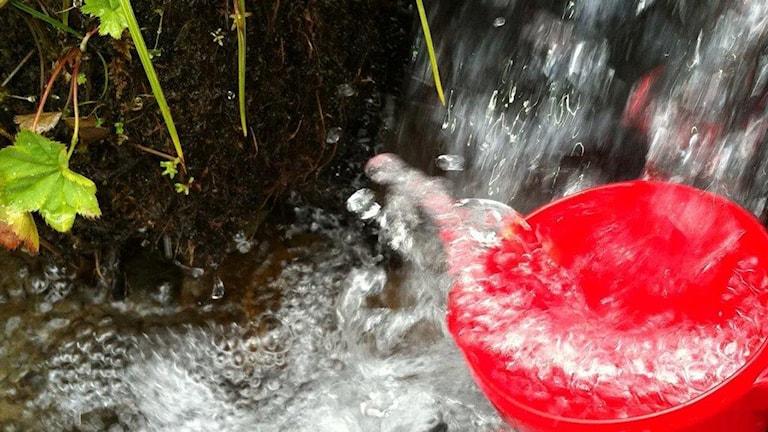 Röd kåsa fylls av vatten i en fjällbäck.
