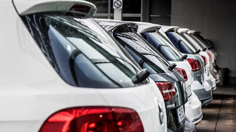 Flerabilar på rad i en bilhall.