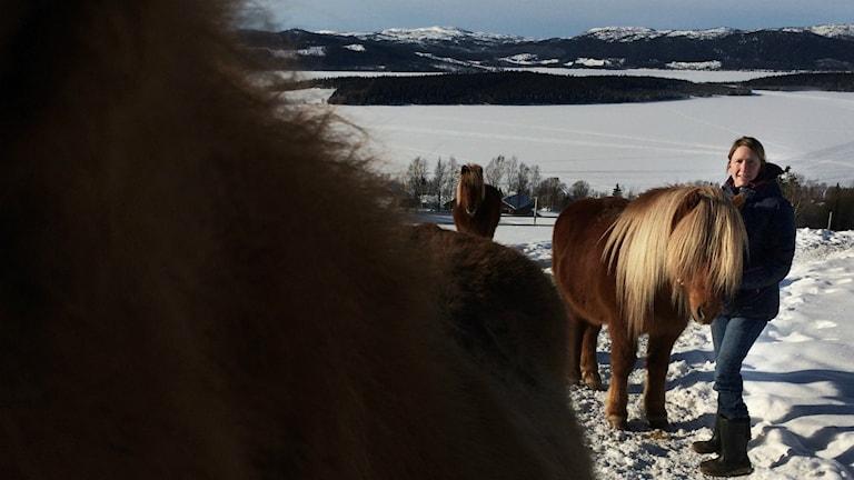 Hästar och kvinnor på snöig äng.