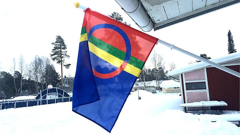 Samisk flagga.