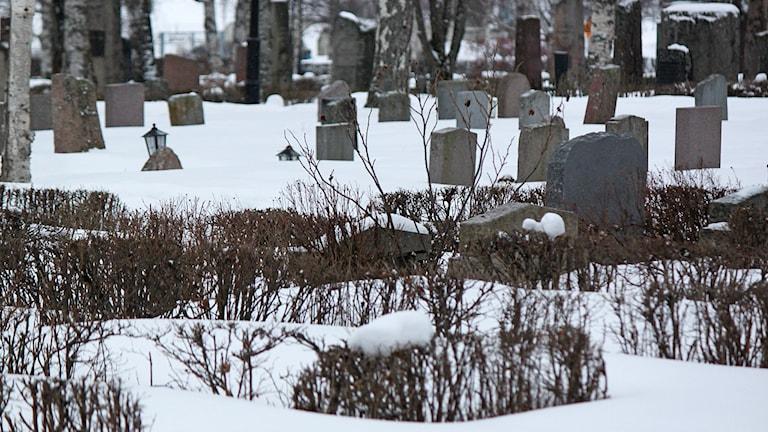 Vy över kyrkogård/begravningsplats vintermiljö (Östersund)