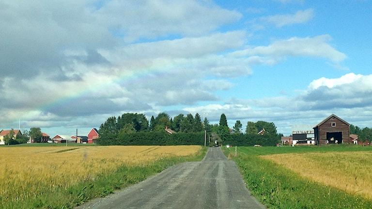 Landsbygd Krokom