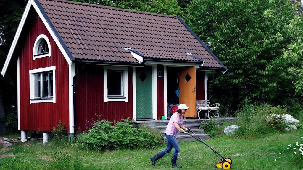 Kvinnan klipper gräs framför sitt fritidshus. Foto: Hans Holmberg/TT