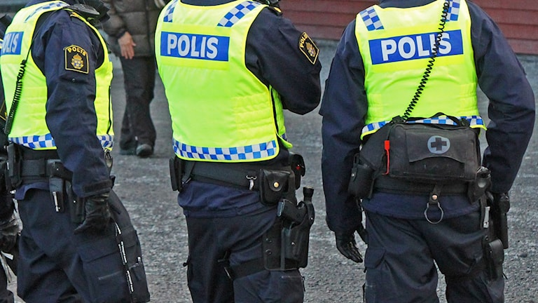 Ryggtavlan på tre poliser