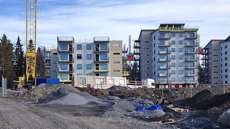 Byggstrejk - byggarbetsplatsen vid Remonthagen Östersund