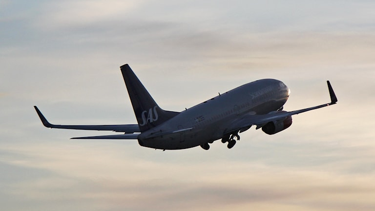 SAS-flygplan i luften