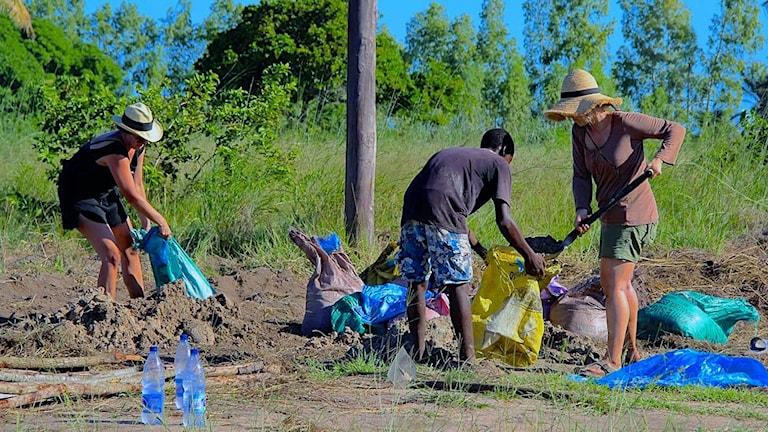 Volontärerna Frida Schleenvoigt och Elin Hemreus hämtar sand på savanneni Mocambique