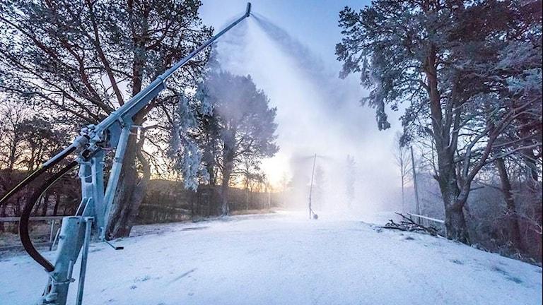 Snökanon sprutar snö i skidspår