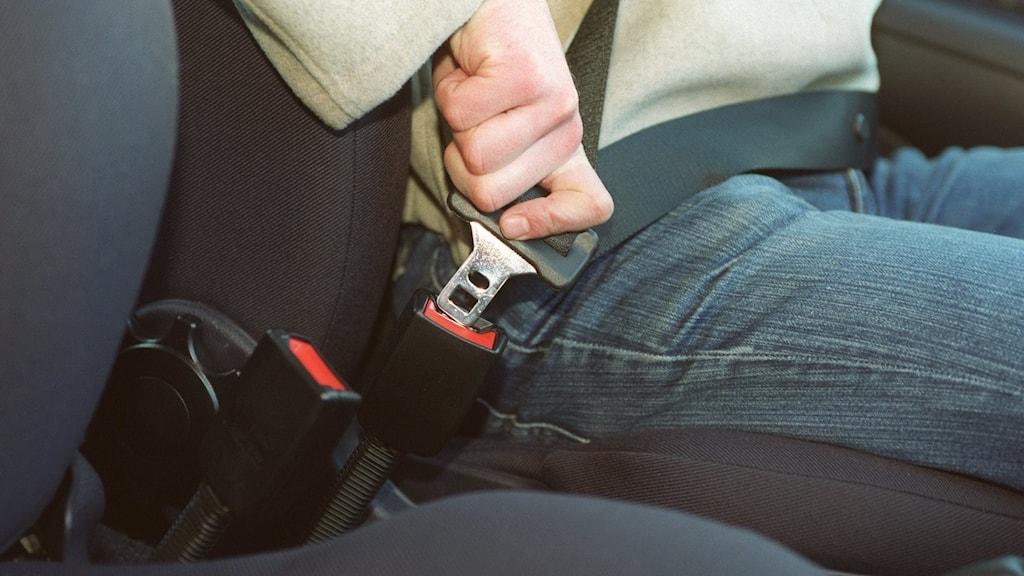 en bilförare trycker fast bilbältet, sittade i förarsätet