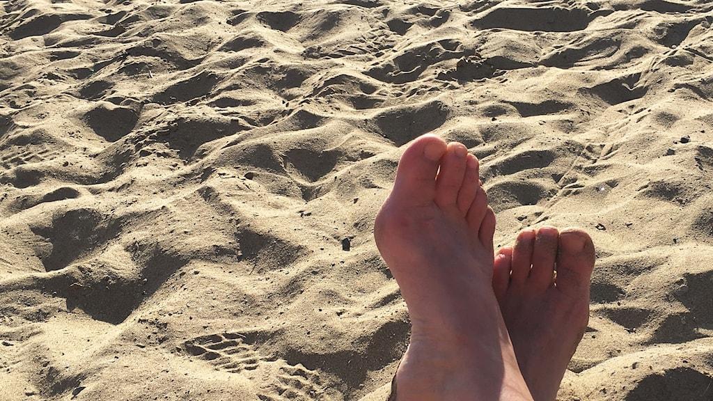Fötter på solbadande person på sandstrand