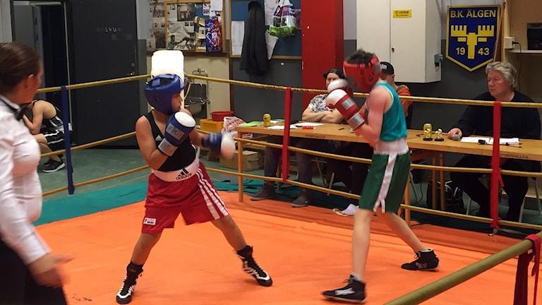 DiplomboxningBKÄlgen 160925. Foto: Michael Ragnarsson/SR