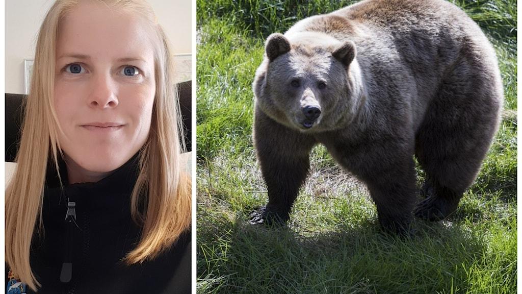 En kvinna och en brunbjörn.
